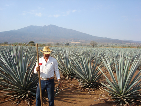 blue-agave-farmer-tequila-mexico