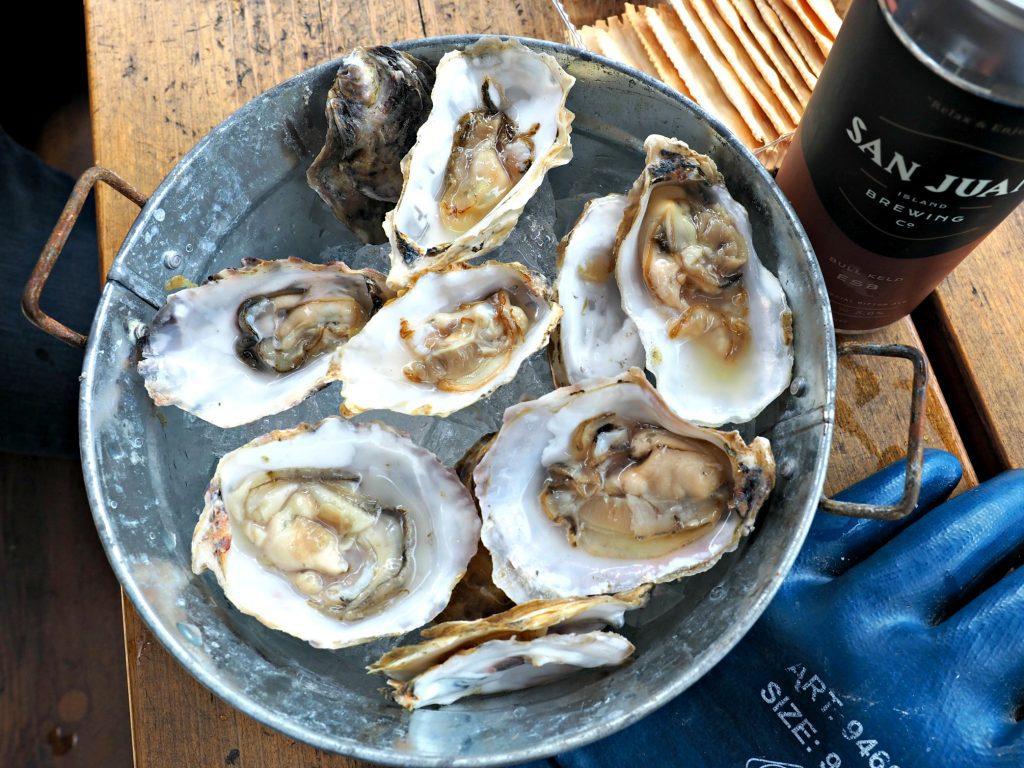 oyster farm, San Juan islands, San Juan island, westcott bay San Juan island