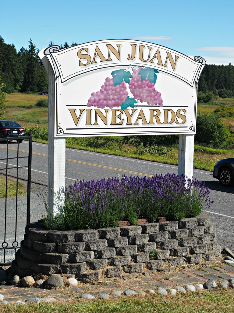 San Juan vineyard, winery on San Juan island, winery on San Juan, Friday harbor, San Juan island, San Juan islands