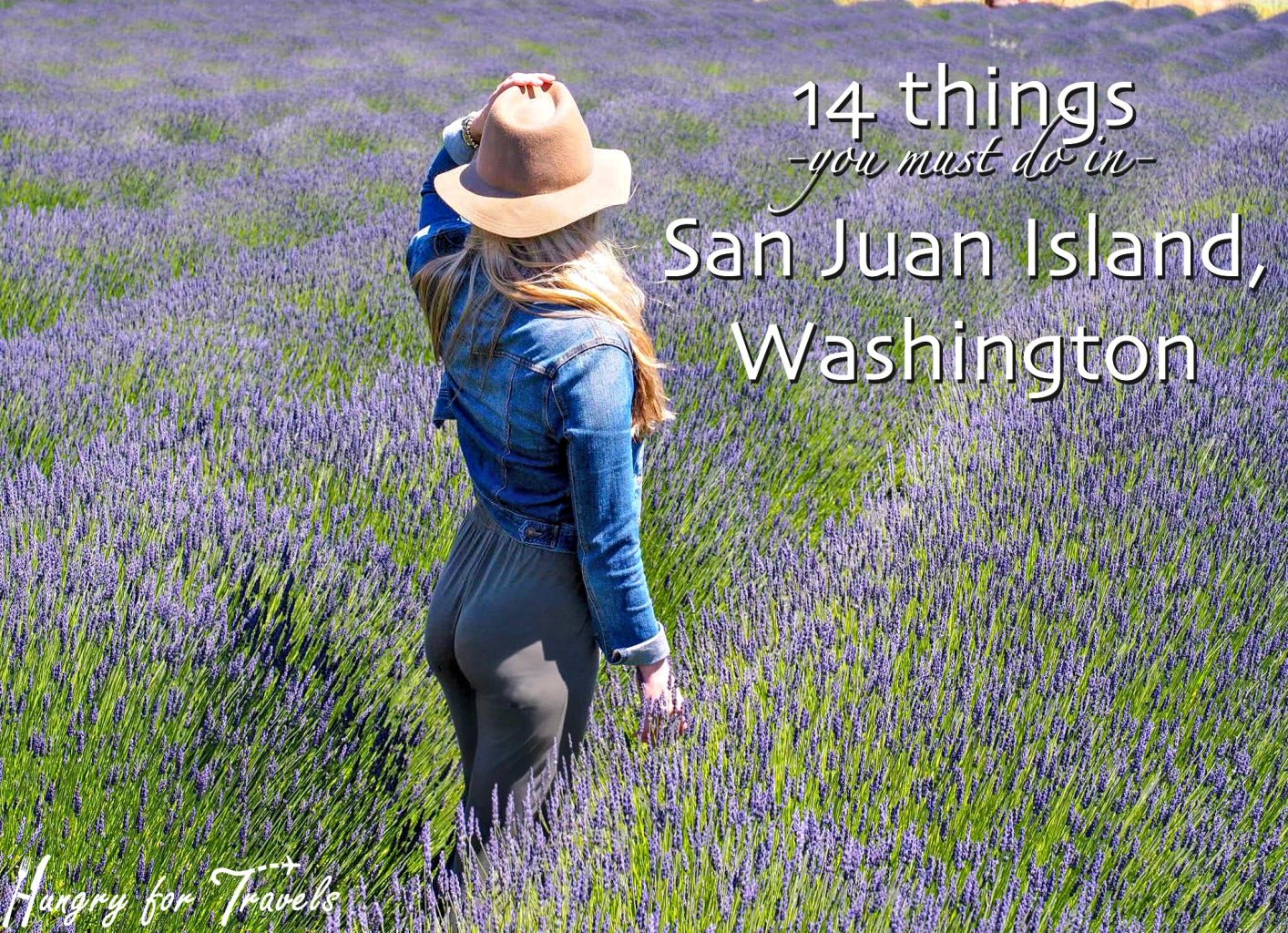 San Juan Islands What To Do In Island
