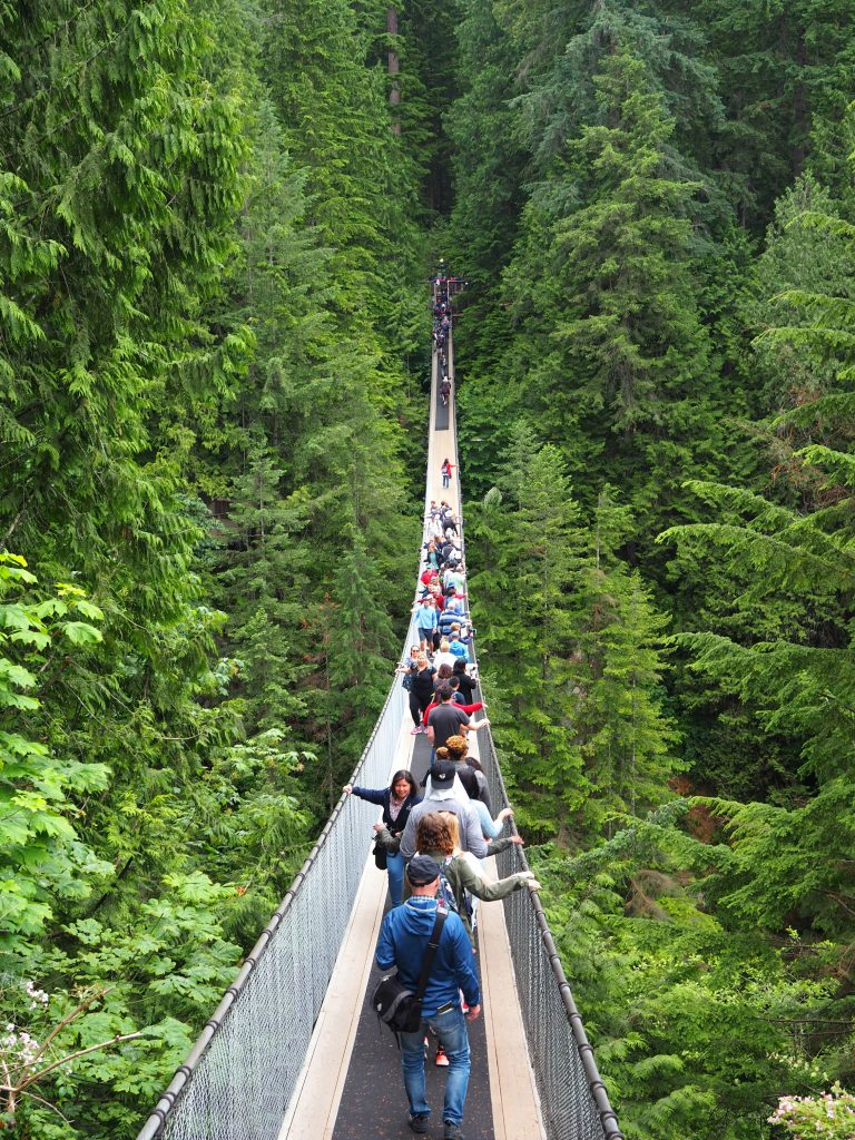 Vancouver, what to do in Vancouver, Vancouver city guide, what to do in BC, capilano suspension bridge,