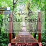 Exploring the Cloud Forest in Monteverde, Costa Rica